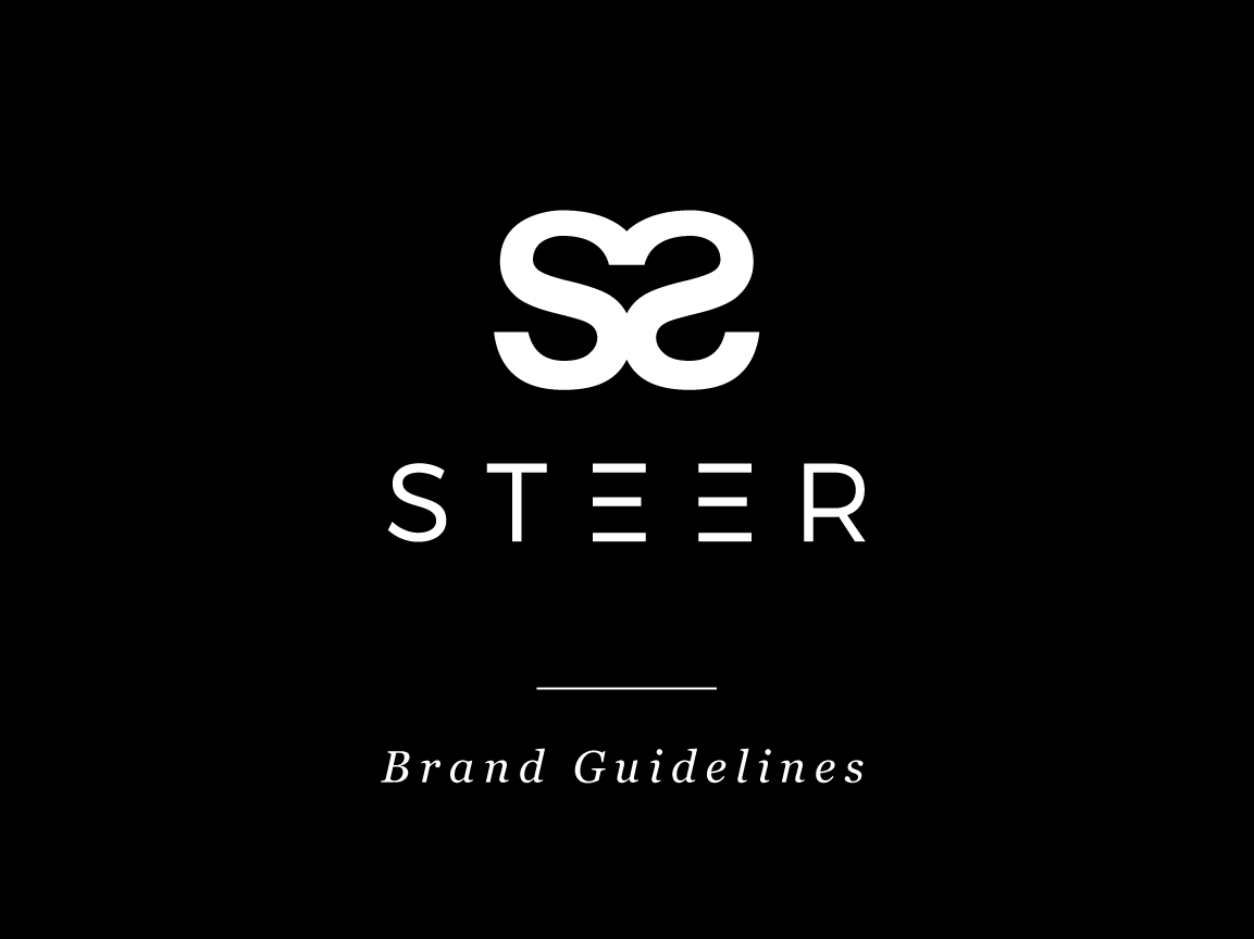 Steer Brand Identity cosmetics upscale high end luxury symmetry negative space parallel lines brand style guide guidelines business ecommerce consulting beauty graphic design lettering type typography logo branding design