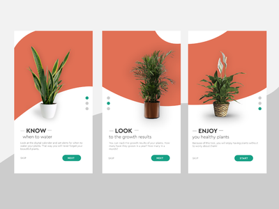 UI Daily day #023 flow oranje onboarding screens onboarding day 23 daily ui 23 daily ui 023 023 plants typography illustration design daily 100 challenge daily dailyui ui uidaily uidesign