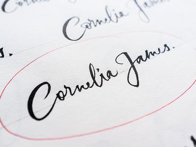 Cornelia James Brush Sketch