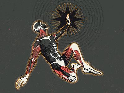 Corporeal textures design illustration guadalajara mexico realistic star layers anatomical muscles skull skeleton anatomy corpse