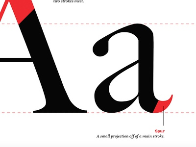 Type - Teaser apex typography letter font x-height spur a anatomy type