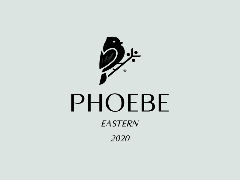 PHOEBE 2020 bird logo bird black animal mark logo branding