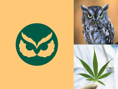 Budbo(First Option) cannabis logo cannabis golden ratio goldenratio hemp cbd owl negative space animal icon mark logo branding