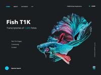Fish T1K website design