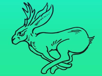 Jackalope design logo illustration identity branding