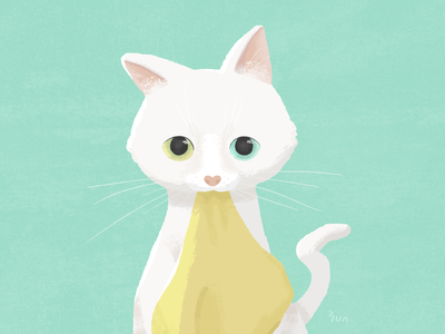 Look! cute look eyes white cat yununuan character art illustration drawing design
