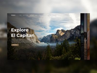 Escapes nature website booking web flat typography ux ui ui design minimal design clean modern