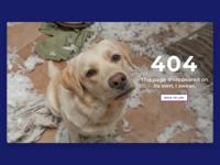 HuffPost Life 404 Page