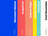 Prommoto Brand Colours colours colorpalette branding graphicdesign uxui ui designagency uxdesign design brandidentity