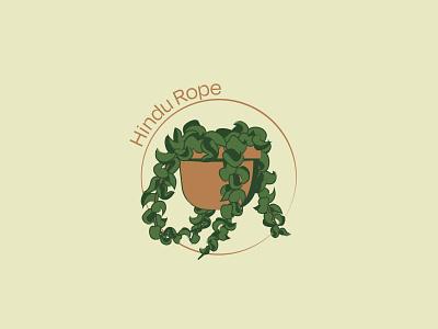 Hindu Rope - 71/365 leaf leaves vines tan copper green design illustrations houseplant garden botanical botany plants wax plant plant