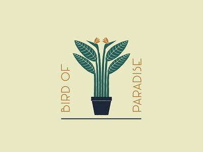 Bird of Paradise - 73/365 orange tan green houseplant plants tropics tropical vector design flower leaf leaves plant bird of paradise
