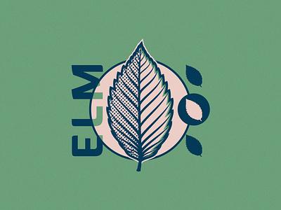 Elm Leaf - 274/365 half tone typography badge illustration leaves plants plant leaf tree elm