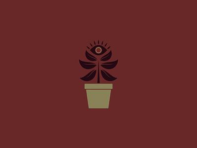 Looking Plant - 309/365 mystic eye pot houseplant plant