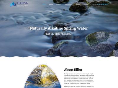 Elliotspring