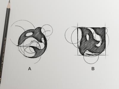 Orca Logo Process