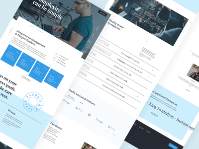 Ad Management & Analysis Platform web design design uidesign web figma ui webdesign