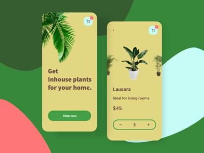 App for purchasing indoor plants