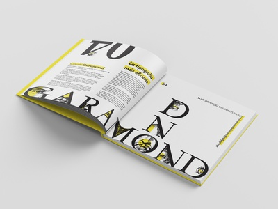 TypeBook Part 2 editorial typography book identity