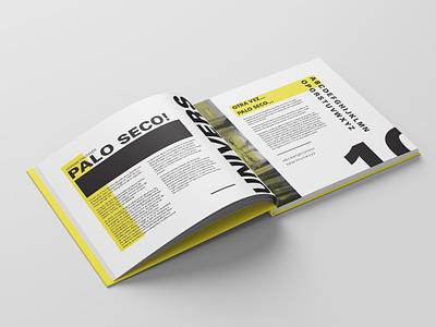 TypeBook Part 4 identity branding typography illustration book editorial design