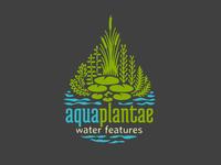 Aquaplantae
