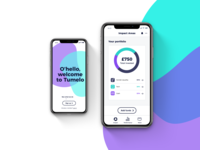 Investment App UI and Branding