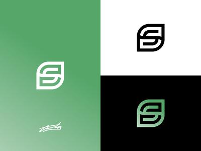 S & Leaf Logo Concept for Sale