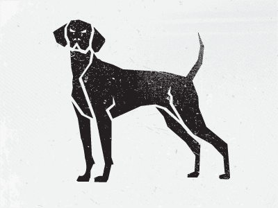 Dog Exploration black dog illustration graphic design graphic designer
