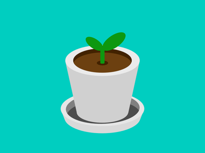 小盆栽Small potted plant
