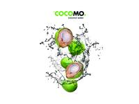 Cocomo Logo and Identity