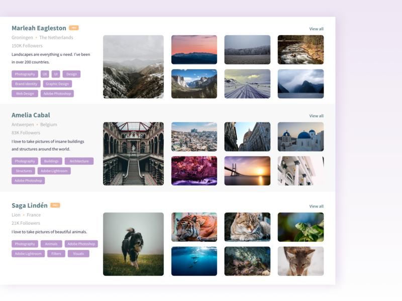 Photography Portfolio tags pro app web application ui design portfolio photography portfolio photography