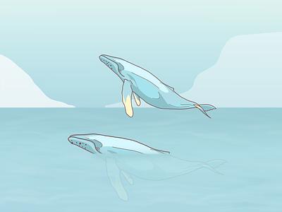 Blue Whale procreate blue whale ocean sea