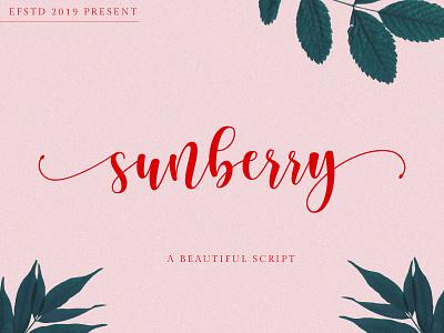 Sunberry | Beautiful Script handwriting font modern calligraphy fonts font modern font curly font script font branding font crafter font chic font calligraphy font cricut font