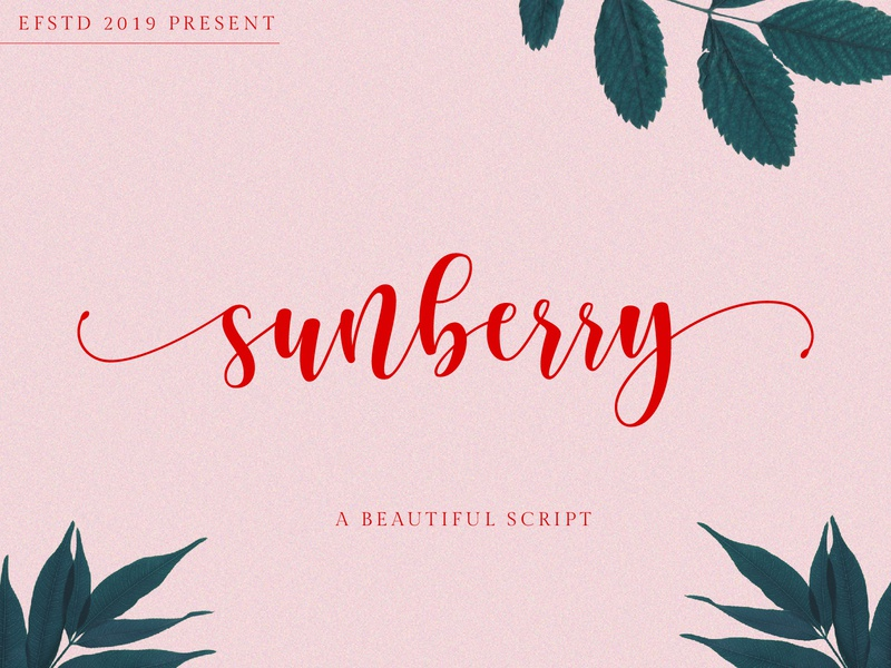 Sunberry | Beautiful Script handwriting font modern calligraphy fonts font modern font curly font script font branding font crafter font chic font calligraphy font cricut font