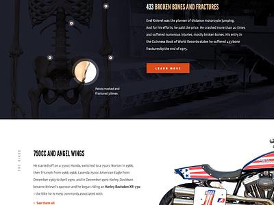 Evel design elegant seagulls america legend landing web design vintage mocktober