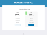 Pricing Table Design For Membership