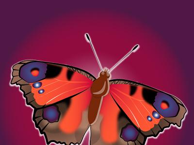 100 векторная графика флет бабочка