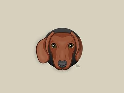 Favorite Animal - Dog (Dachshund) - dribbble Weekly Warm-up 04 dog logo icon sausage dog dachshund dog dribbbleweeklywarmup dribbble illustration south wales wales cardiff illustrator