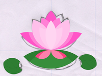 Blossom Flower Final Stage