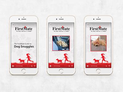 FirstMate Pet foods Instagram Stories red illustration branding pet dog pet food instagram stories instagram story instagram story ui uxui design