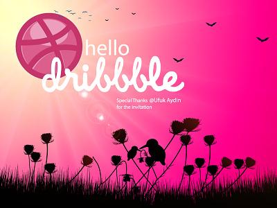 Hello Dribbble! debut bird first shot hello dribble vector illustration