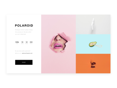 Polaroid - The processing and publication of pictures service