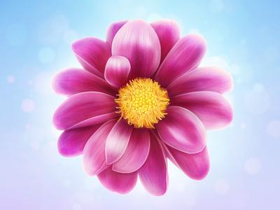 Flower flower icon illustration leaf pink lighting borislav