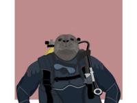 Seal diver