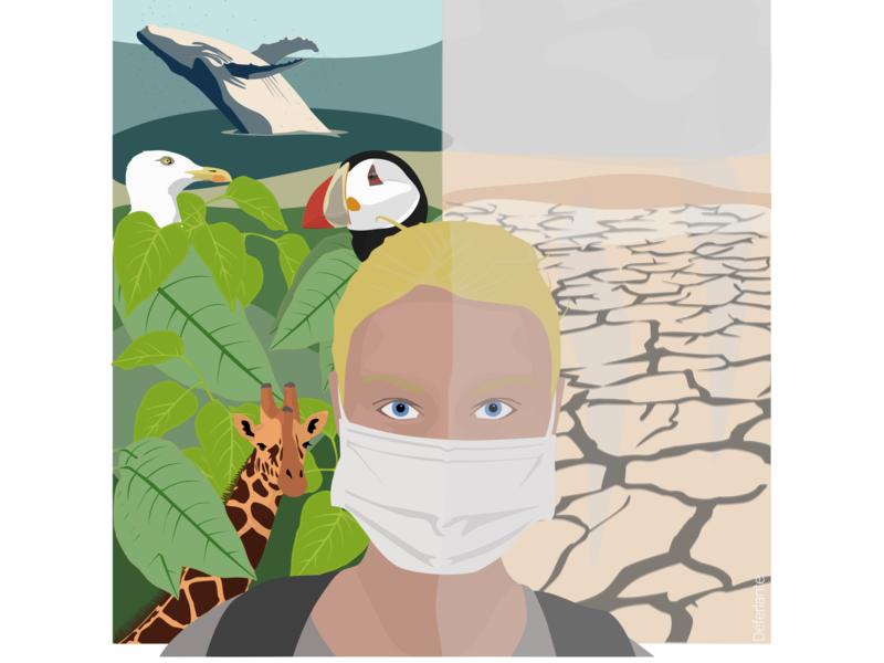 React environment bird sketch illustration flat design