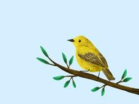 Birdy 02