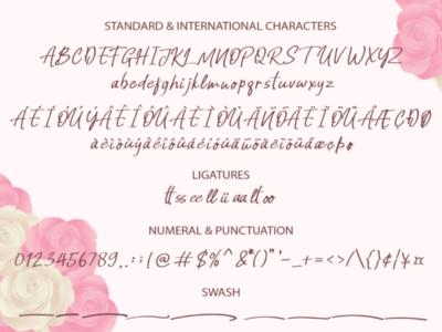 Honey & Lovely Handwritten Font lettering wedding modern elegant luxury fashion typeface typography script text branding signature font handwritten font