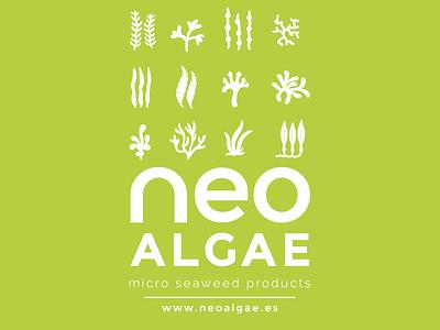 Neo Algae Tshirt Proposal flat typography illustration branding vector