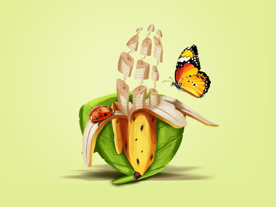 Banana art illustration leaf butterfly ladybird banana