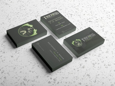Tiberius Home & Lawn Card businesscard illustration graphicdesign illustrator vector design graphic design print