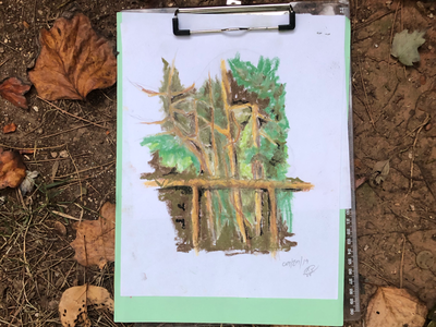 Nupastel Fall Art nupastel prismacolor personal project october leaves trees outside art pastel nature fall